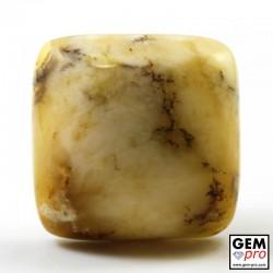 Opale Dendritique 41.90 carats Carré Gemme de Madagascar
