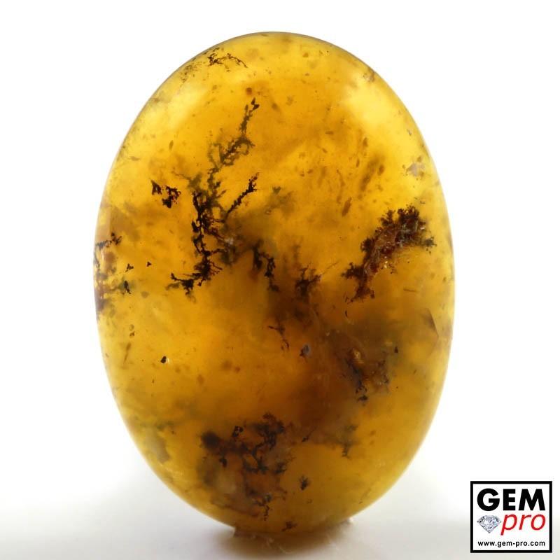 Orange Dendritic Moss Opal 19.27 ct Oval Cabochon from Madagascar Gemstone