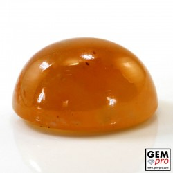 48.63  Carat Yellow Orange Fire Opal Gem from Madagascar Natural and Untreated