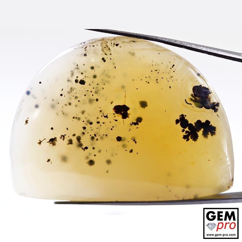 Dendritic Agate 167.30 ct Half Moon from Madagascar Gemstone