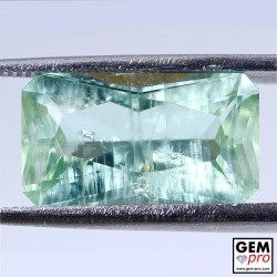 Green Beryl 8.26ct Schiller Effect Cushion from Madagascar Natural and Untreated Gemstone