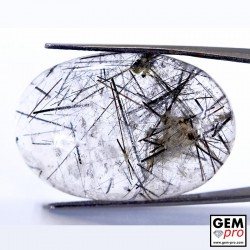 47.17 ct Oval Black Tourmaline in Colorless Quartz Gemstone from Madagascar Natural and Untreated