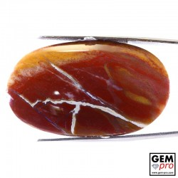 68.94 ct Oval Multicolor Petrified Wood Gemstone from Madagascar Natural and Untreated