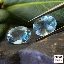 Blue Aquamarine 1.37ct (2 pcs) Oval Lot from Madagascar Natural and Untreated Gemstone