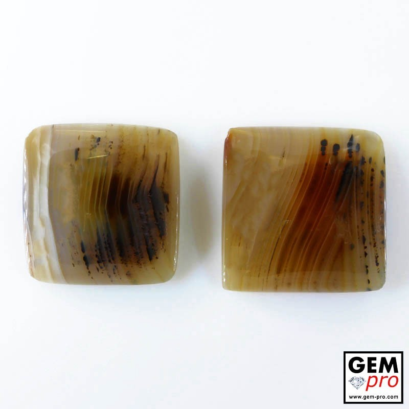 41.69 ct Agate Gemstone (2 pcs) from Madagascar Natural and Untreated