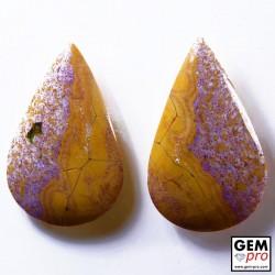 25.84 Carat Jaspe Orbiculaire 2 p. Gemme de Madagascar