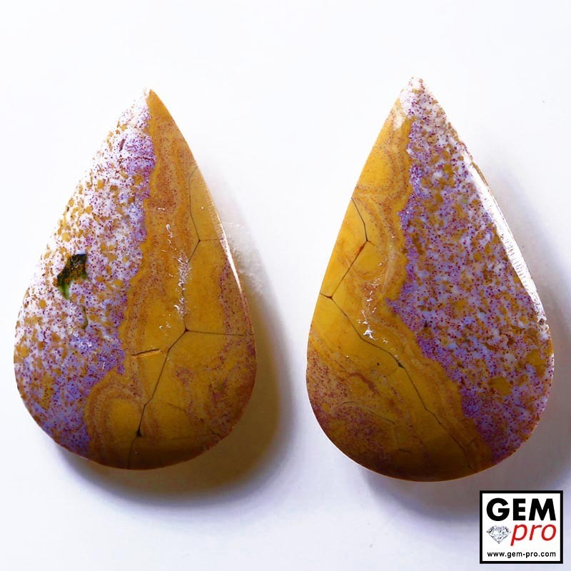 25.84 ct Multicolor Orbicular Jasper Gemstone (2 pcs) from Madagascar Natural and Untreated