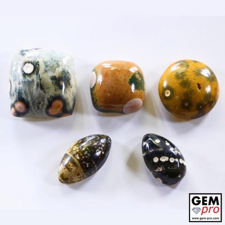 28.15 ct Multicolor Orbicular Jasper Gemstone (5 pcs) from Madagascar Natural and Untreated