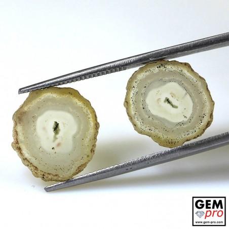 7.43 ct White Solar Quartz Agatized Stalactite Quartz Slice (2 pcs) Gemstone from Madagascar Natural and Untreated