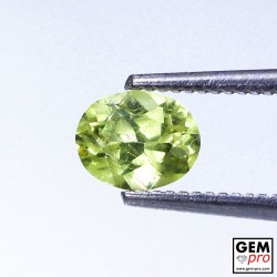 0.70 ct Golden Yellow Chrysoberyl Gem from Madagascar