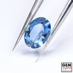 Blue Santa Maria Africana Aquamarine 0.65 ct Oval Cut from Madagascar Natural and Untreated Gemstone