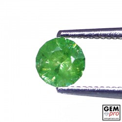 0.67 carat Round 5.3 x 5.3 mm Green Demantoid Garnet Gemstone