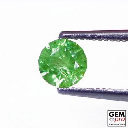 Grenat Vert Démantoïde 0.63 carat Taille Ronde Gemme de Madagascar
