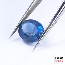 Blue Santa Maria Africana Aquamarine 1.80 ct Oval Cut from Madagascar Natural and Untreated Gemstone