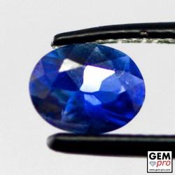 0.43 Carat Saphir Bleu Gemme de Madagascar