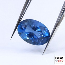 Blue Santa Maria Africana Aquamarine 1.17 ct Oval Cut from Madagascar Natural and Untreated Gemstone