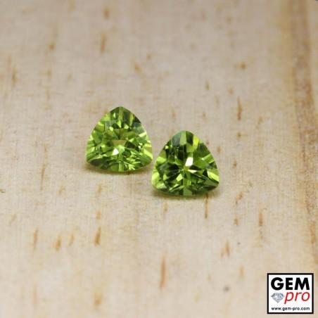 2.66 ct Green Peridot Pair Gem from Pakistan (2pcs) Natural/Untreated
