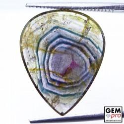 6.69 Carat Tourmaline Multicolore Gemme de Madagascar