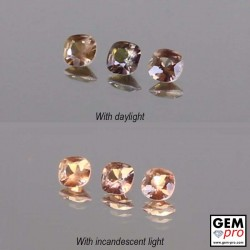 1.04 ctw Cushion 4 x 4 mm Color Change Garnet 3 pcs Lot