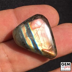 Multicolor labradorite cabochon from Madagascar free form shape 25.6 carat