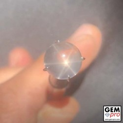 Star rose quartz 5.7 carat round cabochon from Madagascar