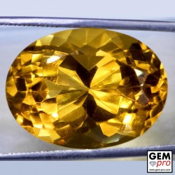 Golden Yellow Citrine 26 Carat Oval Cut from Madagascar Gemstone