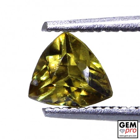 0.75 carat Trillion 5.8 x 5.7 mm Topazolite Garnet Gemstone