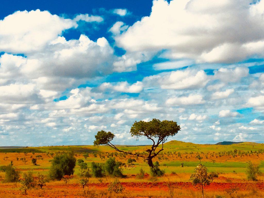 Paysage du plateau de l'Ihorombe, R.N.7 Madagascar