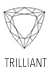 Acheter Gemmes et Pierres Précieuses Forme Trilliant/Troïdia